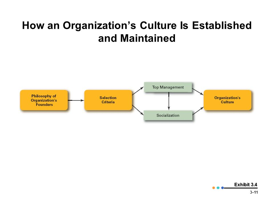 How an Organization's Culture Is Established and Maintained