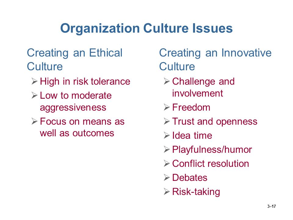 Organization Culture Issues