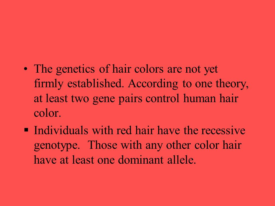 Genetic Traits Ppt Download