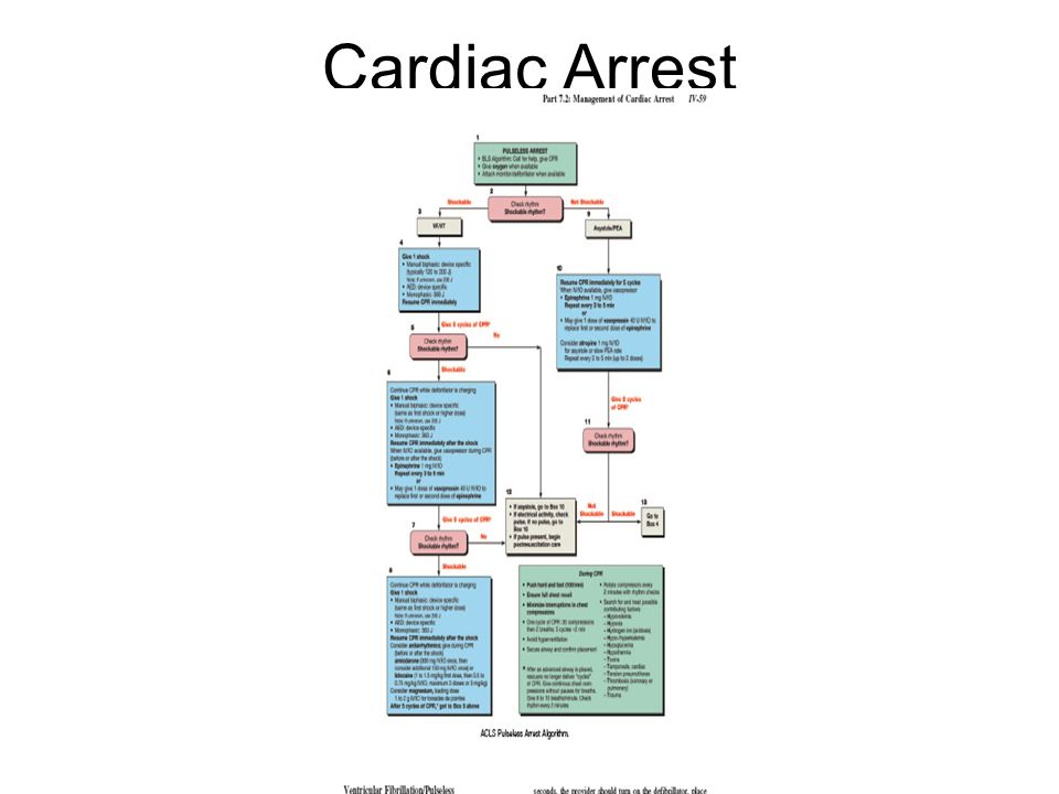Cardio-Pulmonary Cerebral Resuscitation - ppt download   960 x 720 jpeg 43kB