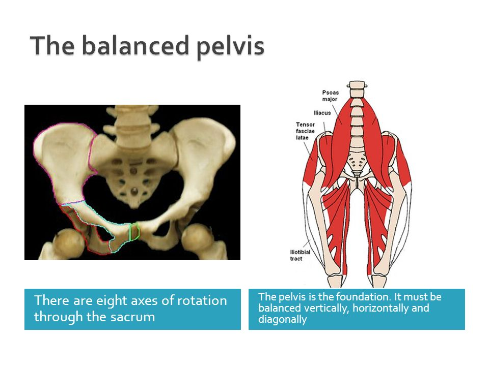 The balanced pelvis There are eight axes of rotation through the sacrum.