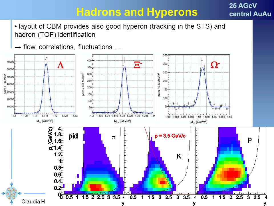 Hadrons and Hyperons 25 AGeV central AuAu