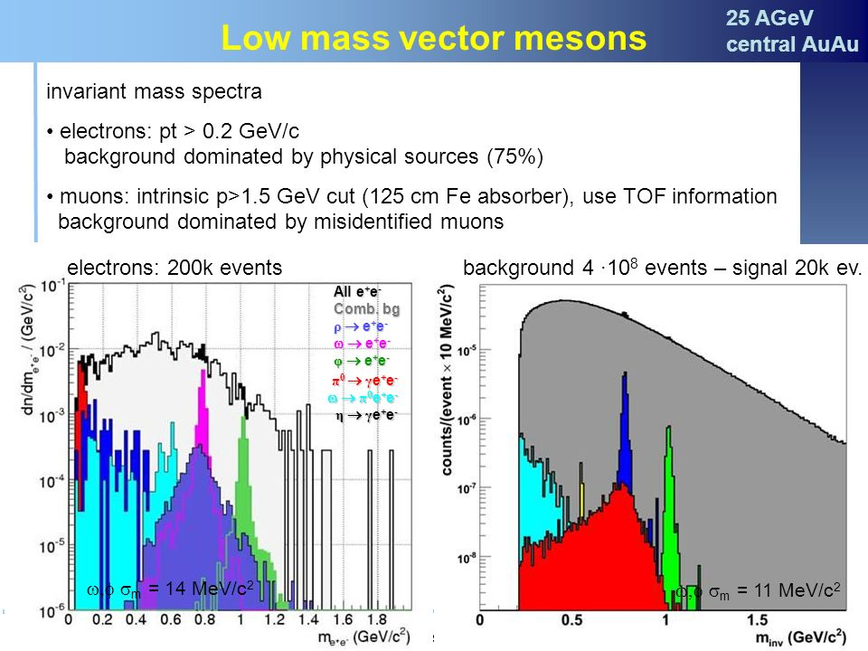Low mass vector mesons 25 AGeV central AuAu invariant mass spectra