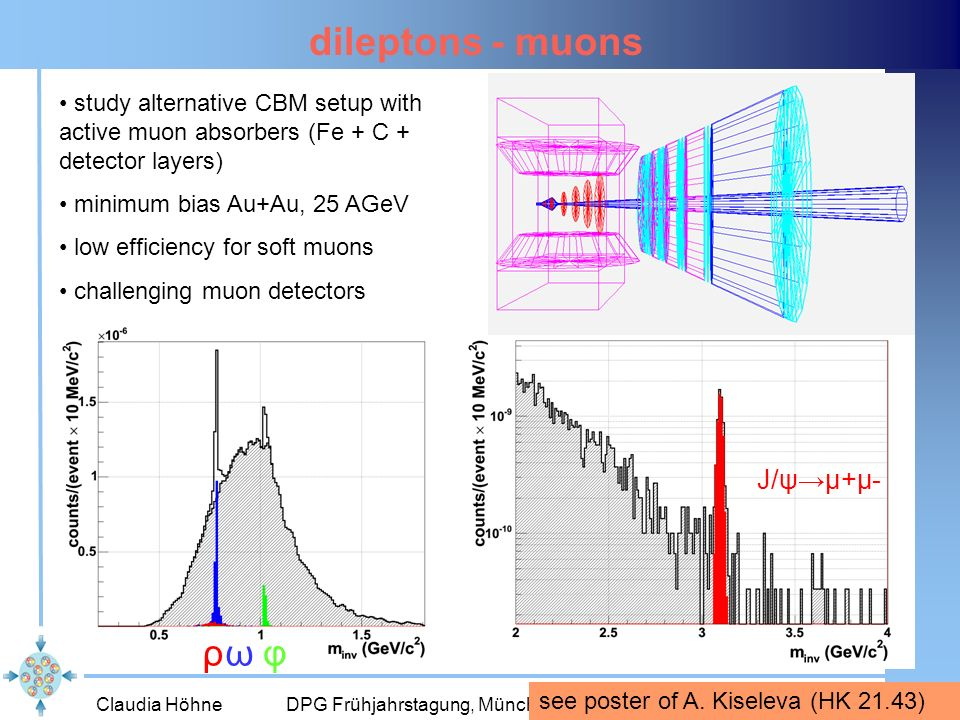 dileptons - muons ρ ω φ J/ψ→μ+μ-