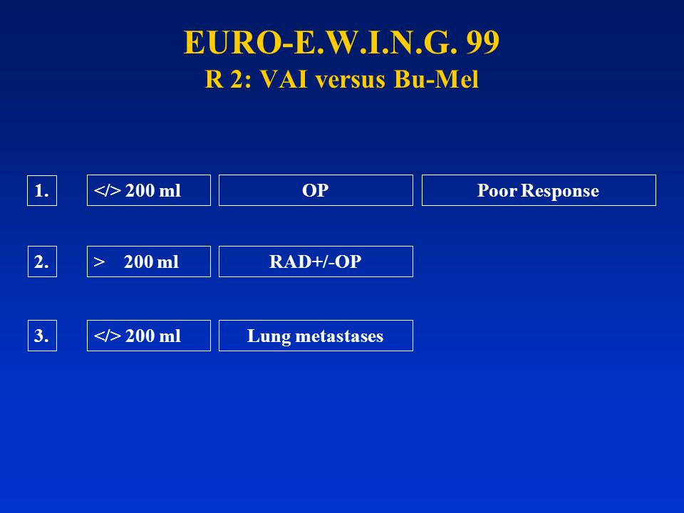EURO-E.W.I.N.G. 99 R 2: VAI versus Bu-Mel