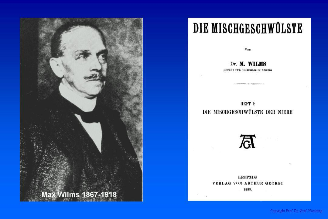 Copyright Prof. Dr. Graf, Homburg