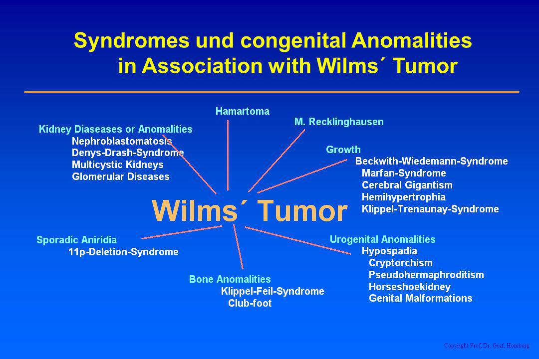 Syndromes und congenital Anomalities in Association with Wilms´ Tumor