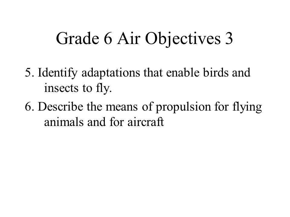 Grade 6 Air Objectives 3 5. Identify adaptations that enable birds and insects to fly.