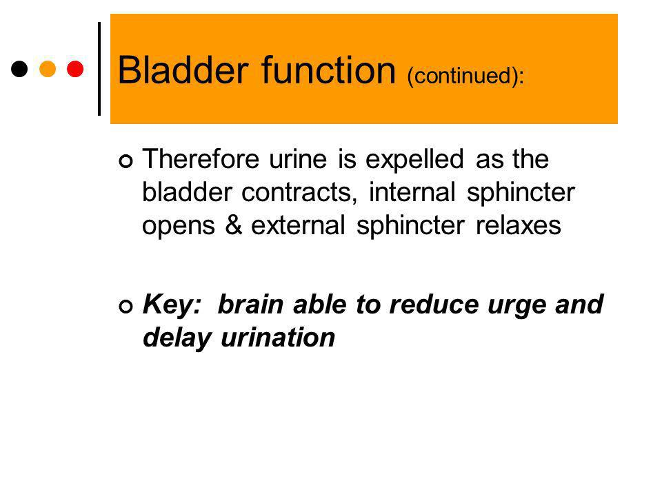 Bladder function (continued):