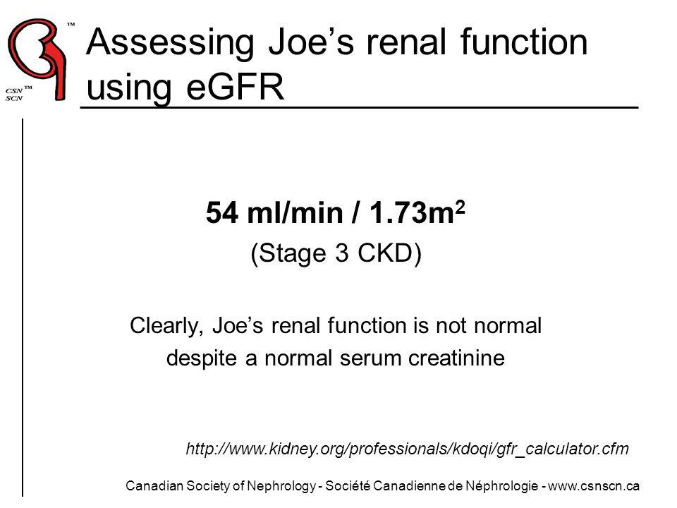 Assessing Joe's renal function using eGFR