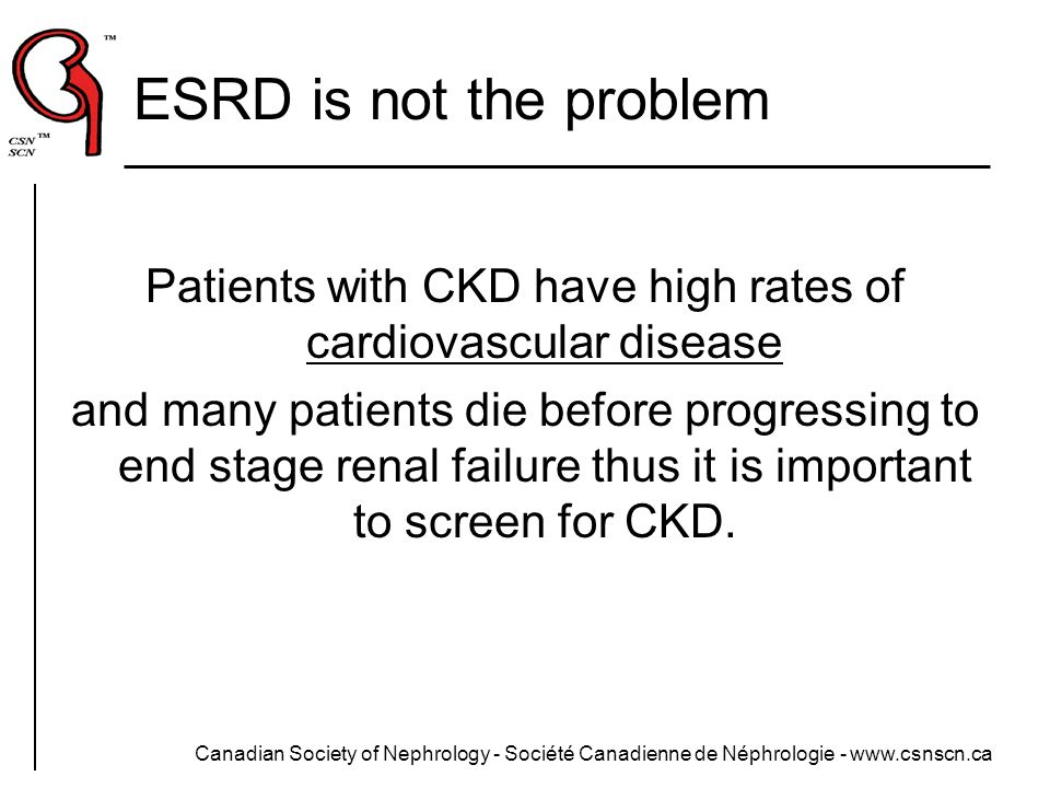 Patients with CKD have high rates of cardiovascular disease
