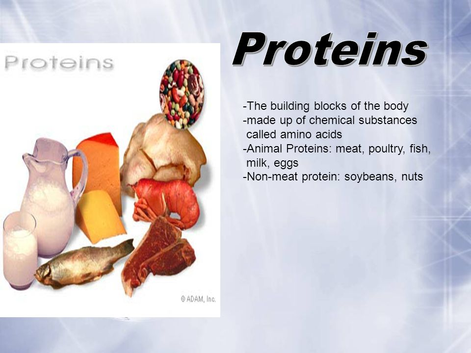 Proteins -The building blocks of the body