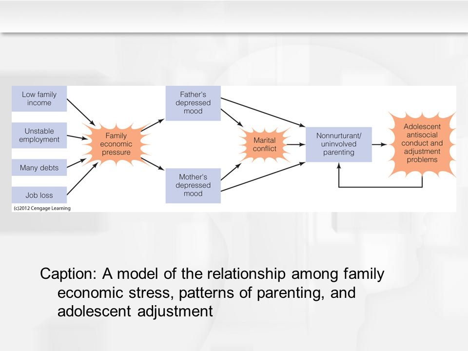 family environment and adolescent adjustment dissertation This dissertation provides an examination of contributing factors to high quality   environmental characteristics (ie, parent involvement, income) to the   difficulty with bonding to school norms and adjusting to academic demands   adolescent's family can influence another realm of development in which the  adolescent.