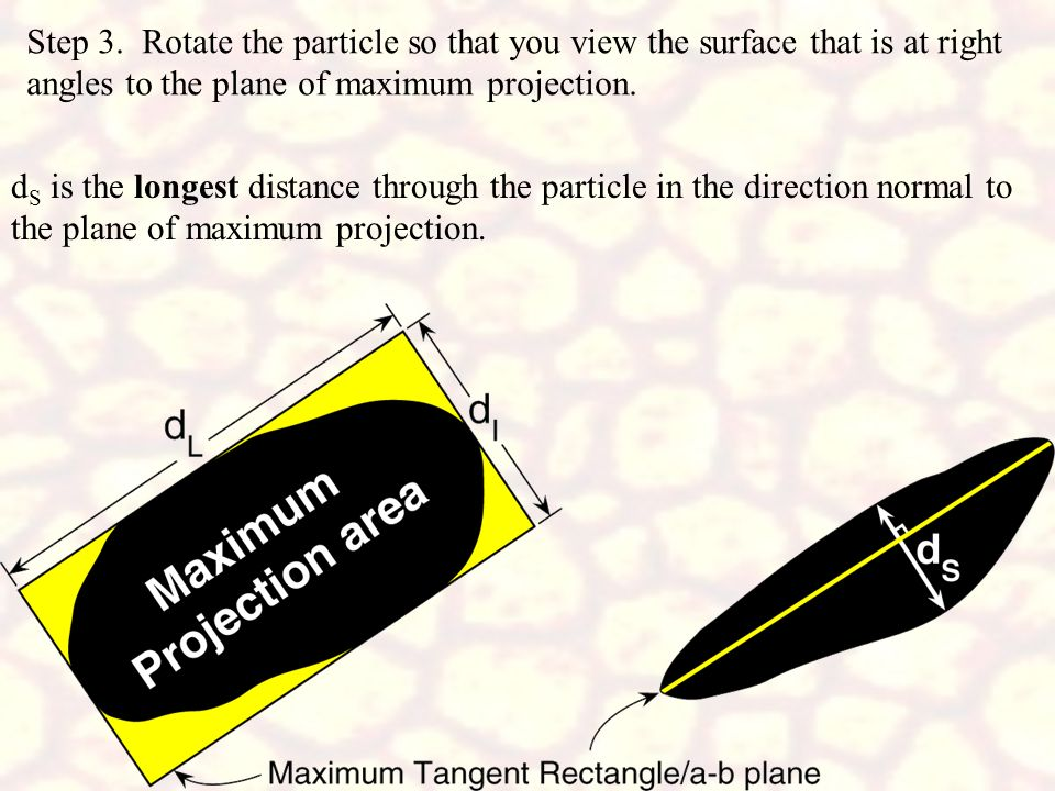 Step 3. Rotate the particle so that you view the surface that is at right angles to the plane of maximum projection.