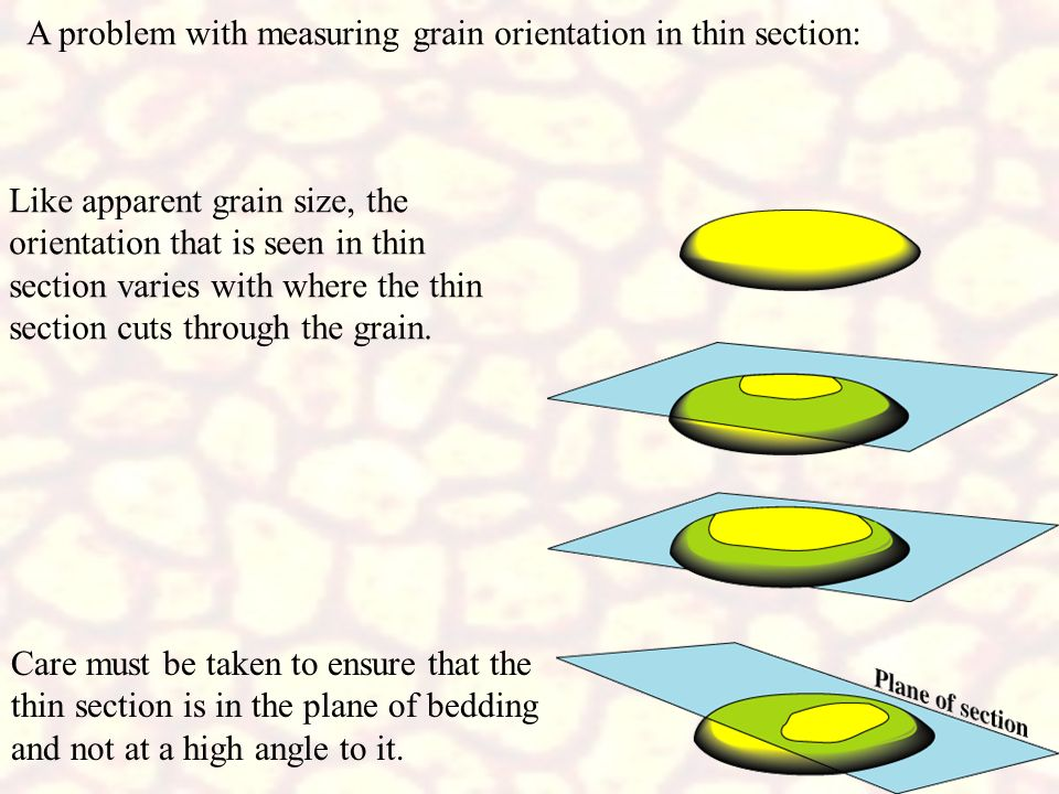 A problem with measuring grain orientation in thin section: