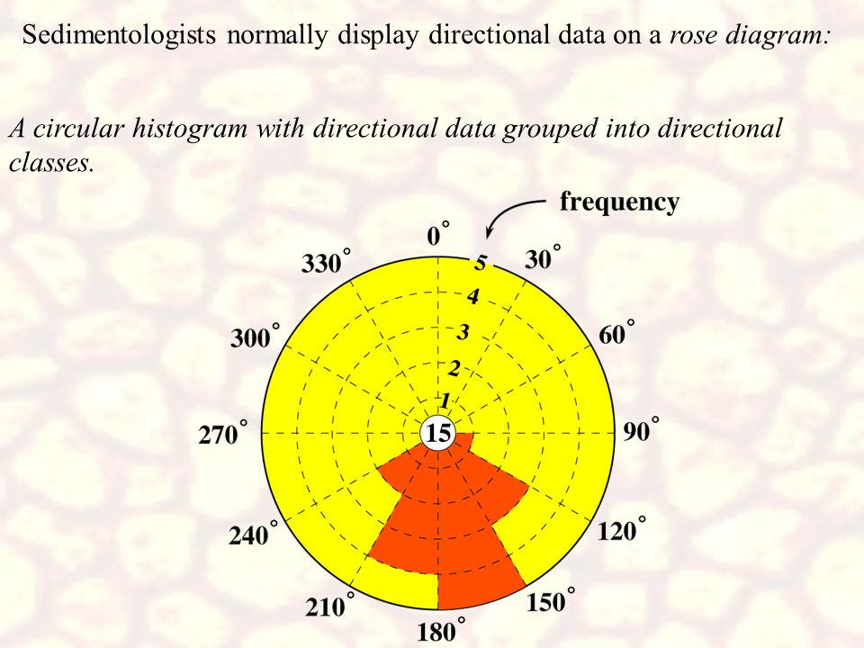 Sedimentologists normally display directional data on a rose diagram:
