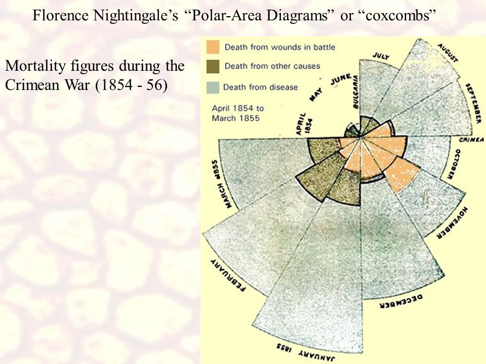 Florence Nightingale's Polar-Area Diagrams or coxcombs