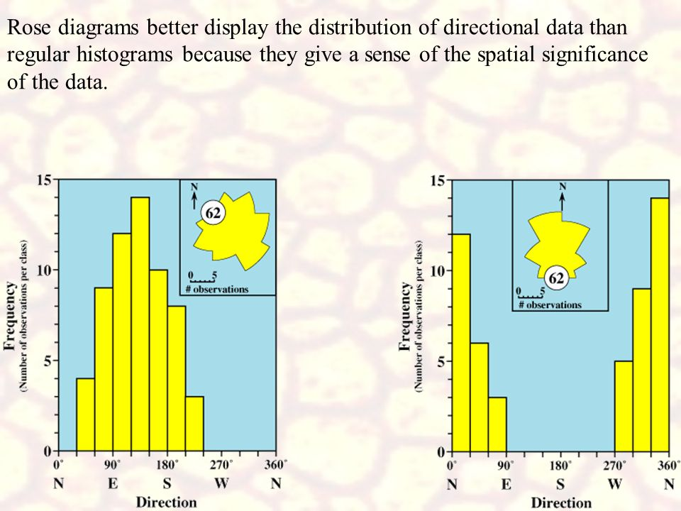Rose diagrams better display the distribution of directional data than regular histograms because they give a sense of the spatial significance of the data.