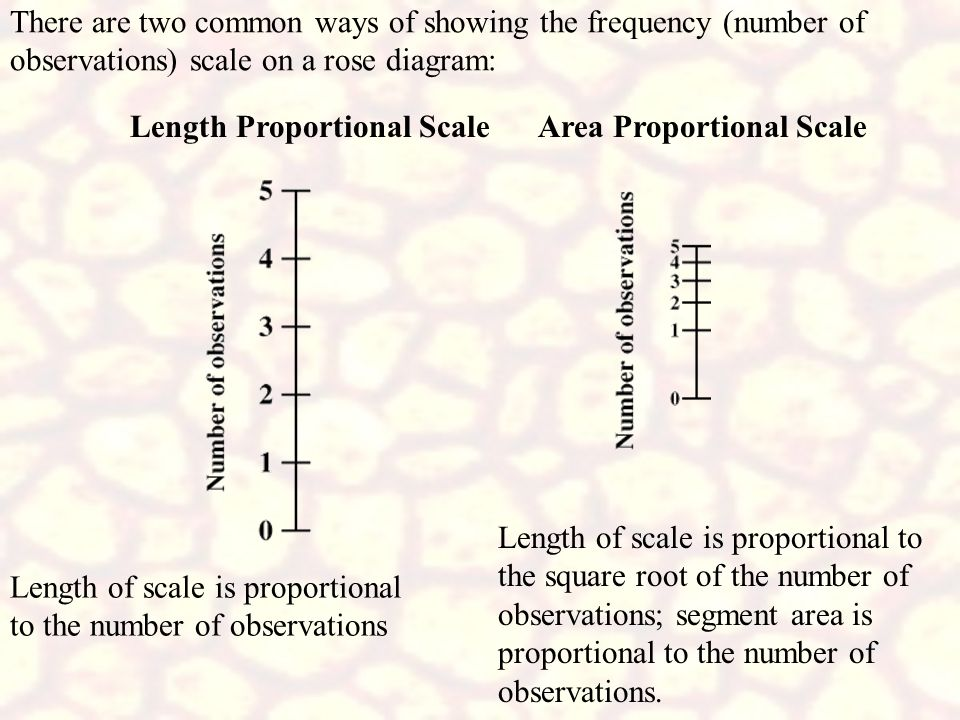 There are two common ways of showing the frequency (number of observations) scale on a rose diagram: