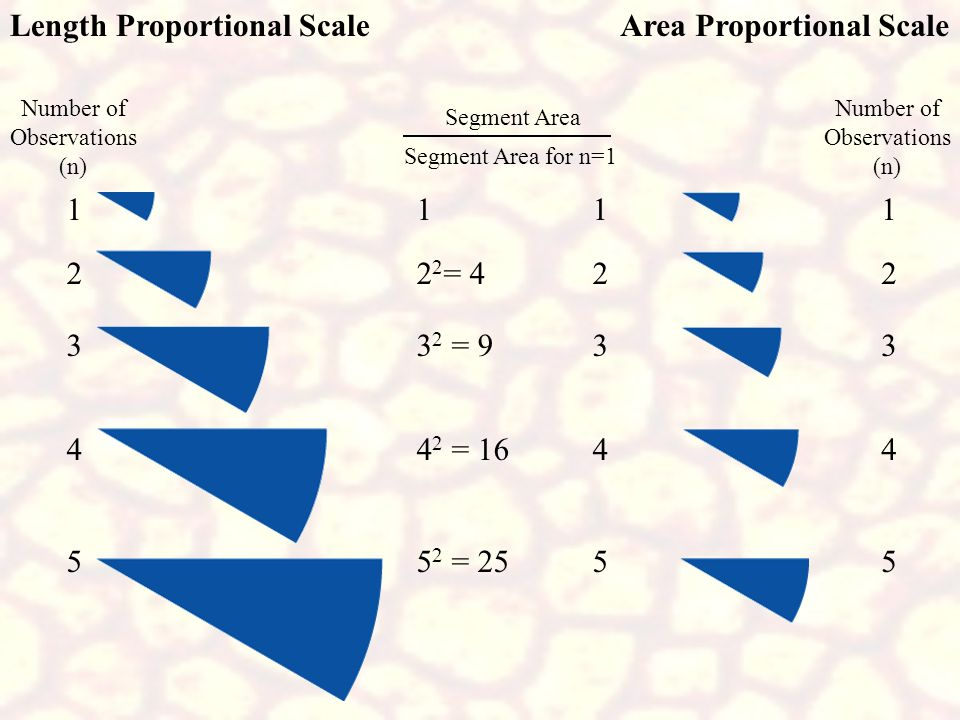 Length Proportional Scale Area Proportional Scale