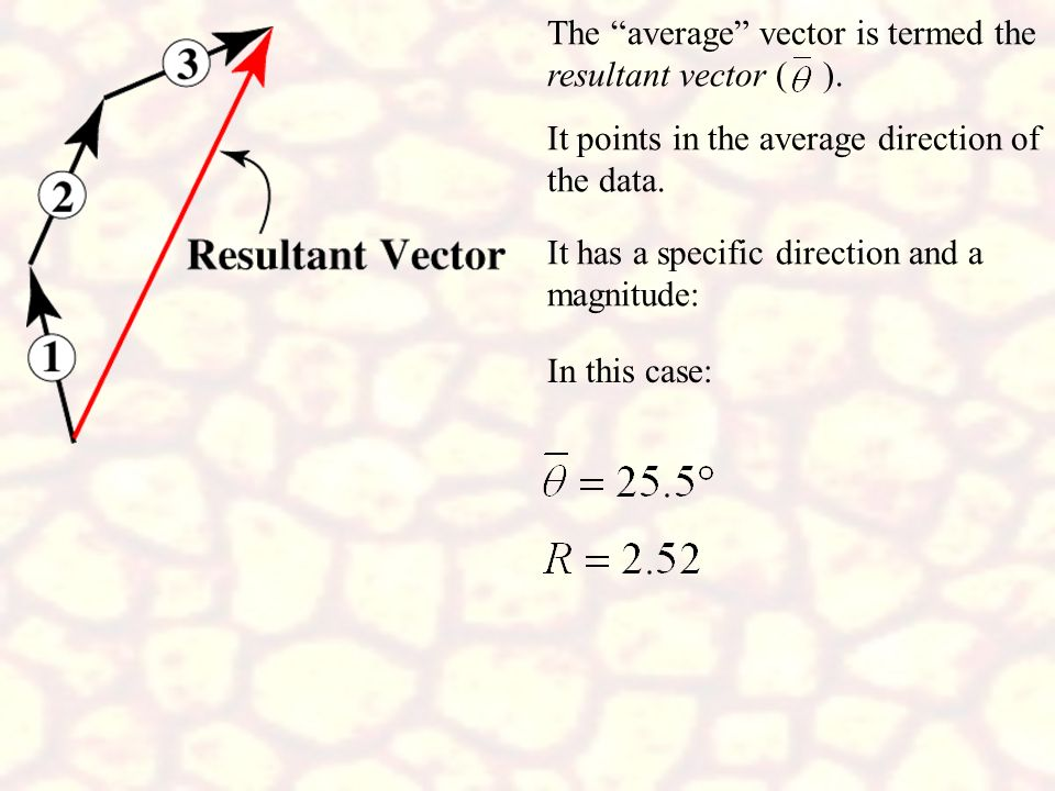 The average vector is termed the resultant vector ( ).