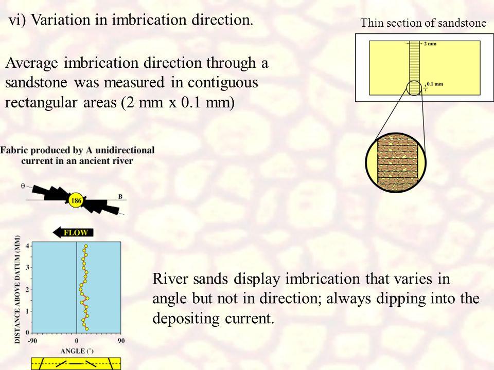 vi) Variation in imbrication direction.