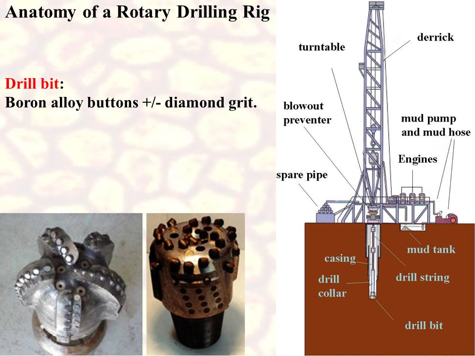 Anatomy of a Rotary Drilling Rig