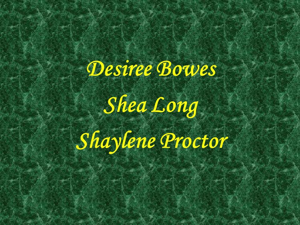 Desiree Bowes Shea Long Shaylene Proctor
