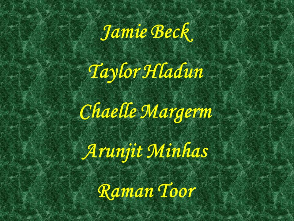 Jamie Beck Taylor Hladun Chaelle Margerm Arunjit Minhas Raman Toor