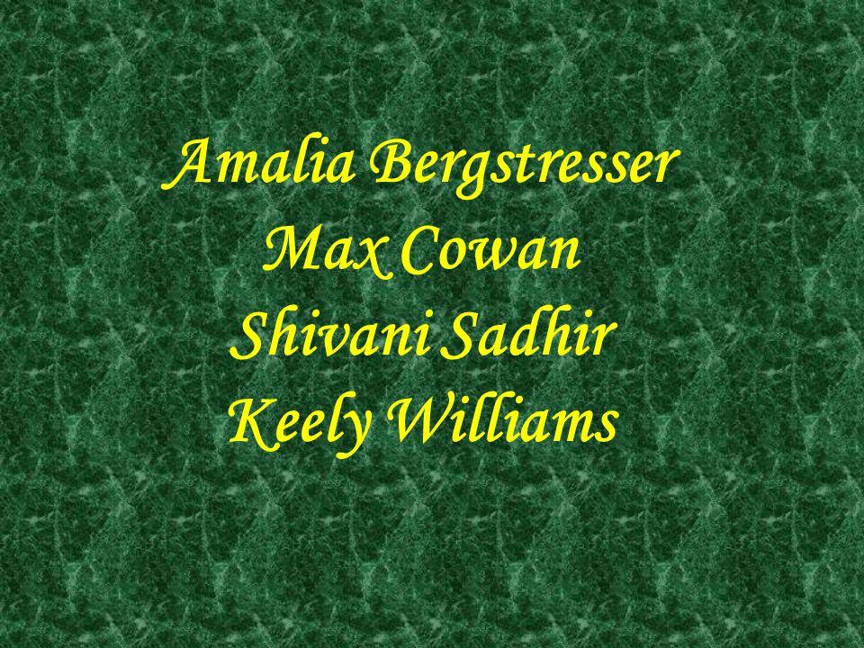 Amalia Bergstresser Max Cowan Shivani Sadhir Keely Williams