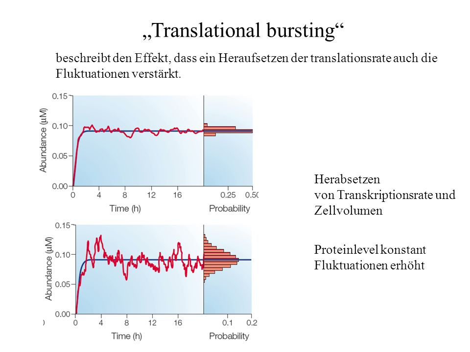 """Translational bursting"