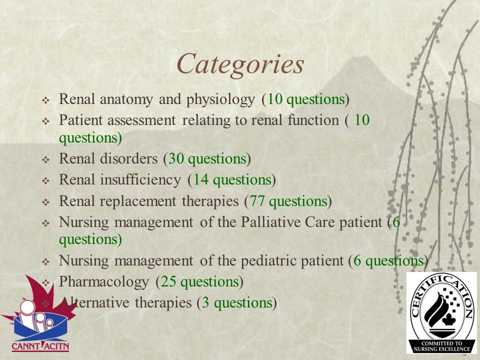 Categories Renal anatomy and physiology (10 questions)