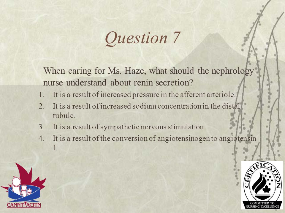 Question 7 When caring for Ms. Haze, what should the nephrology nurse understand about renin secretion