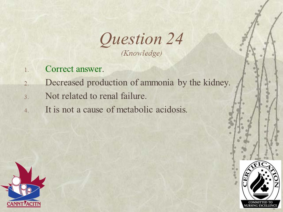 Question 24 (Knowledge) Correct answer.