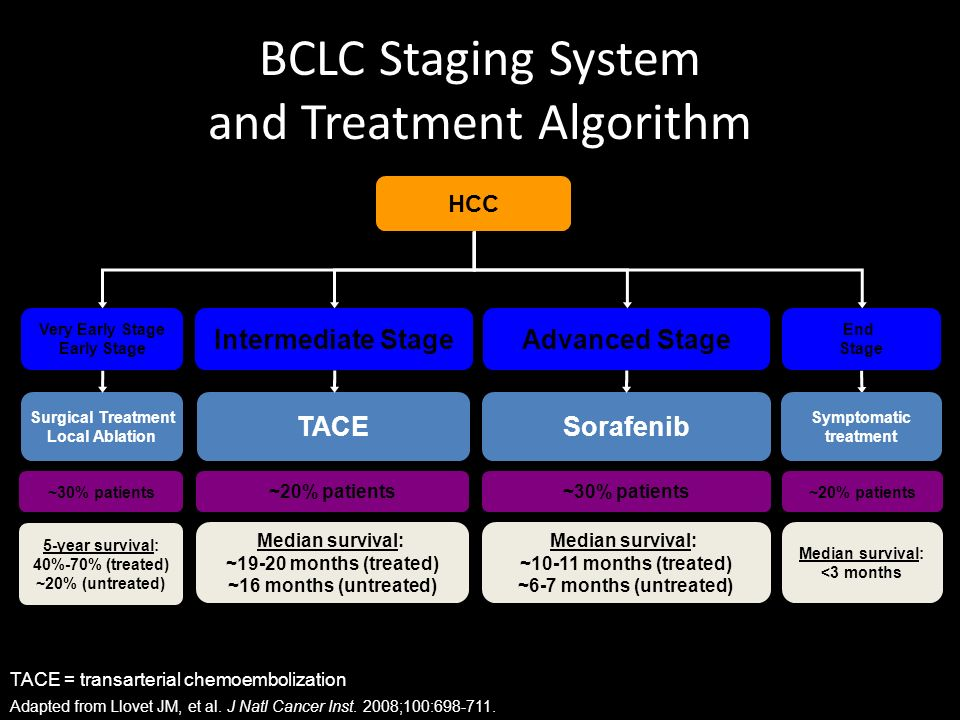 BCLC Staging System and Treatment Algorithm