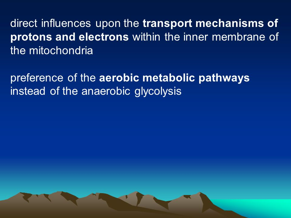 direct influences upon the transport mechanisms of protons and electrons within the inner membrane of the mitochondria