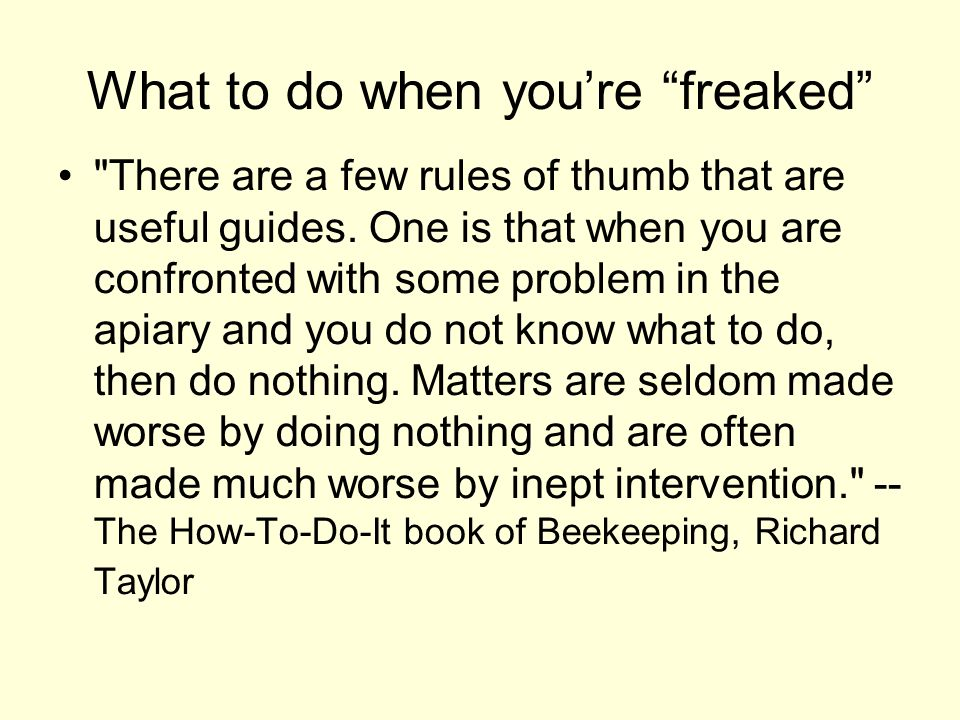 What to do when you're freaked