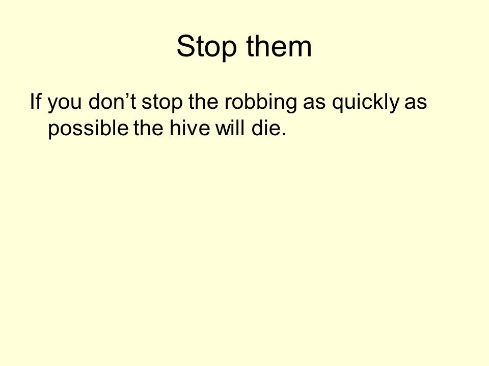 Stop them If you don't stop the robbing as quickly as possible the hive will die.