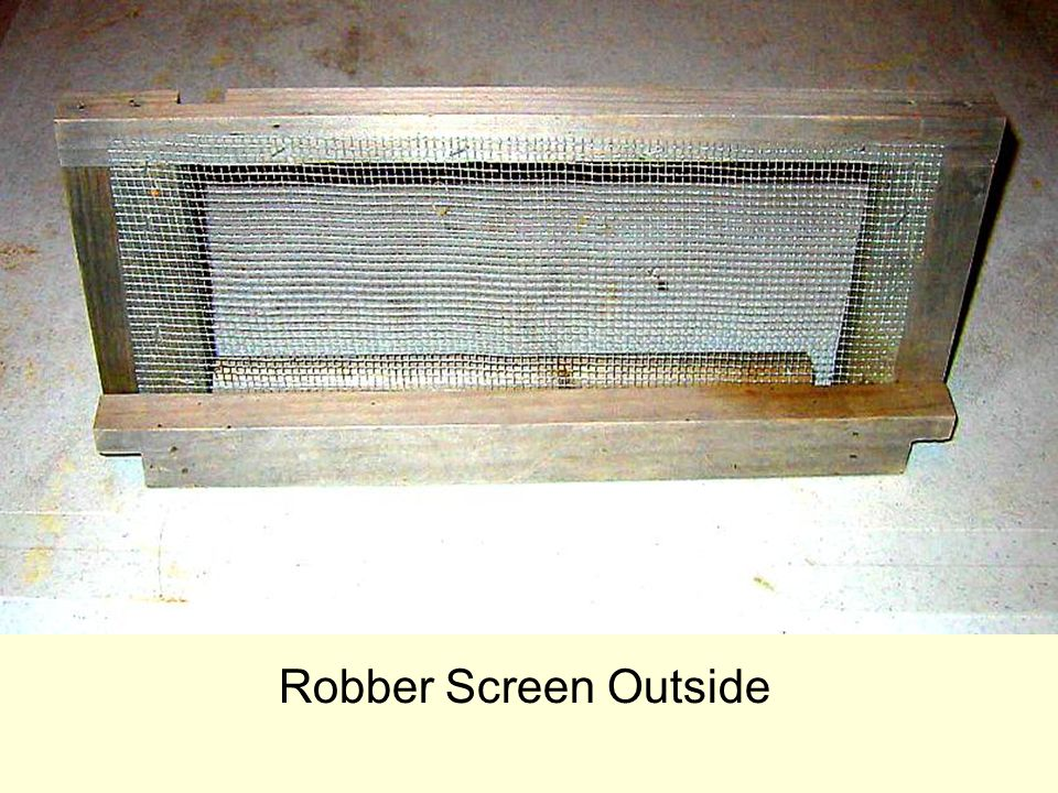 Robber Screen Outside