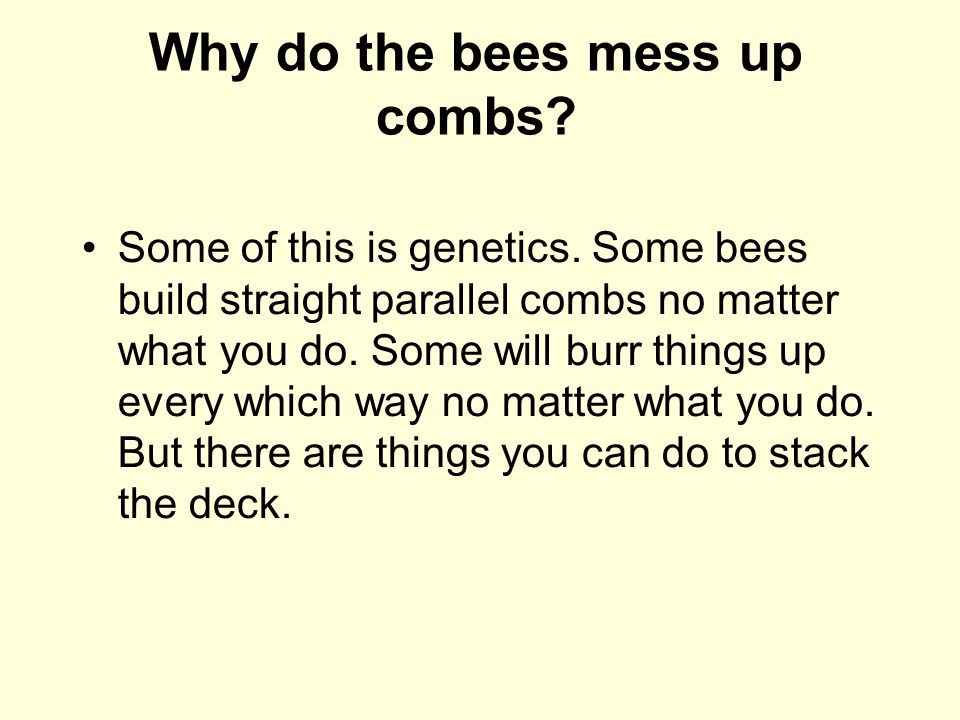 Why do the bees mess up combs