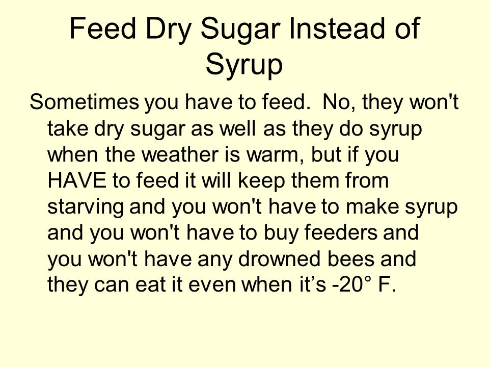 Feed Dry Sugar Instead of Syrup
