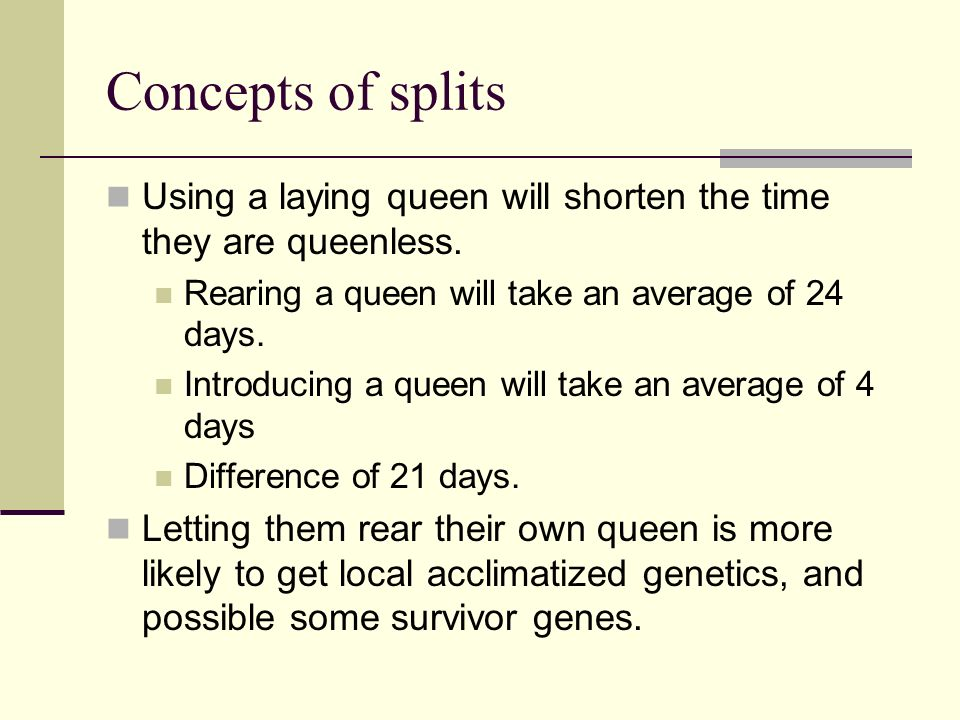 Concepts of splits Using a laying queen will shorten the time they are queenless. Rearing a queen will take an average of 24 days.