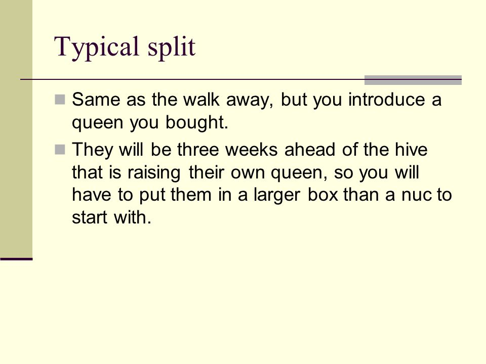 Typical split Same as the walk away, but you introduce a queen you bought.