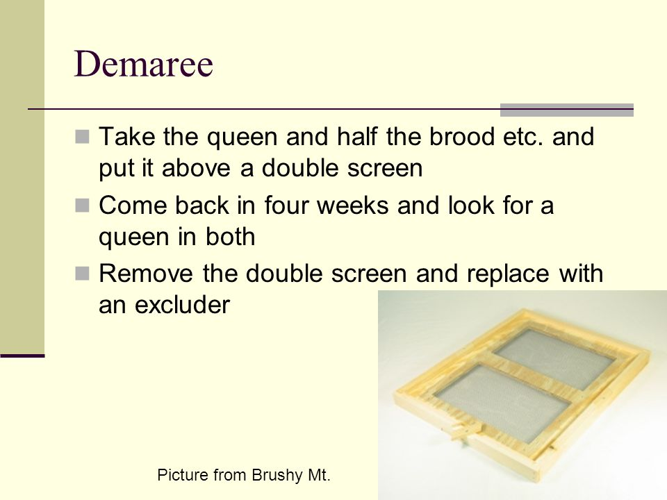 Demaree Take the queen and half the brood etc. and put it above a double screen. Come back in four weeks and look for a queen in both.