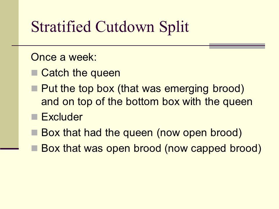 Stratified Cutdown Split
