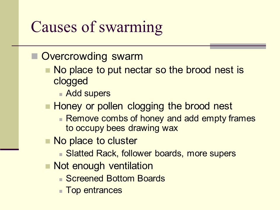 Causes of swarming Overcrowding swarm