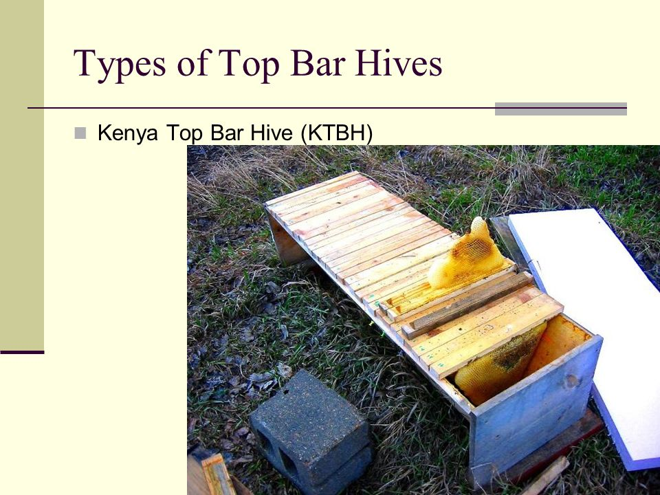 Types of Top Bar Hives Kenya Top Bar Hive (KTBH)