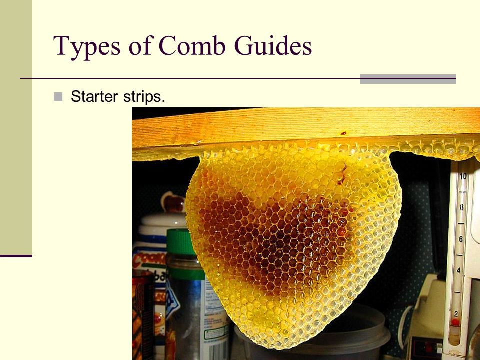 Types of Comb Guides Starter strips.