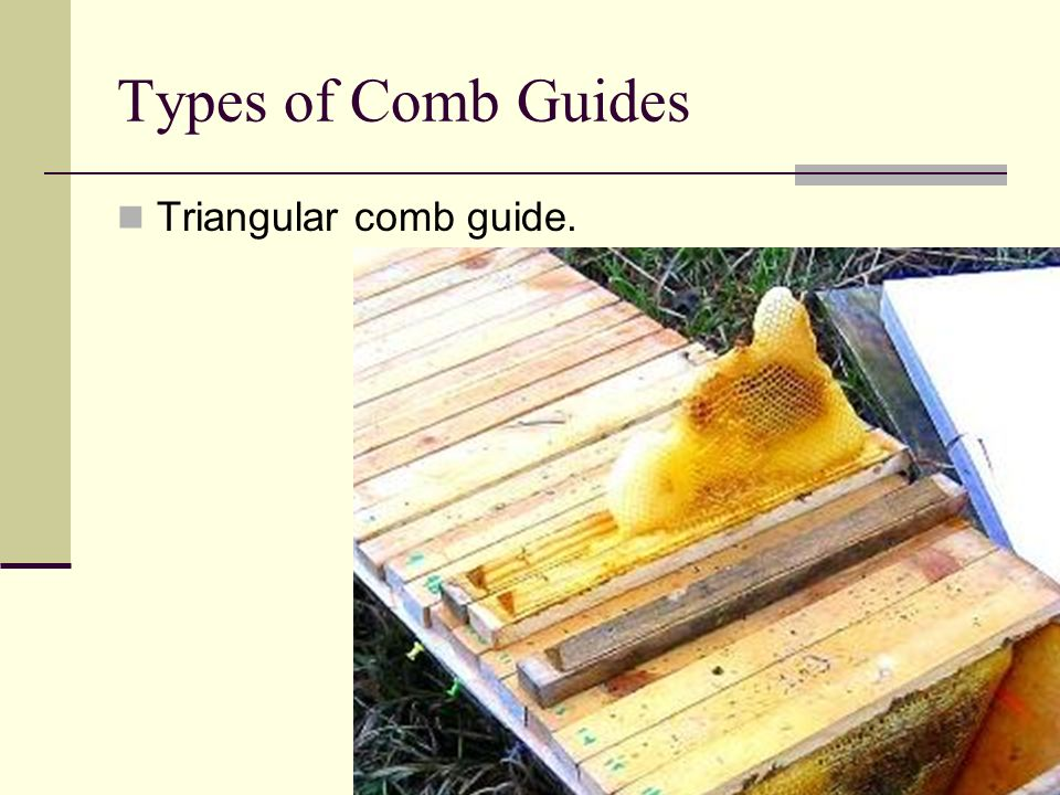 Types of Comb Guides Triangular comb guide.
