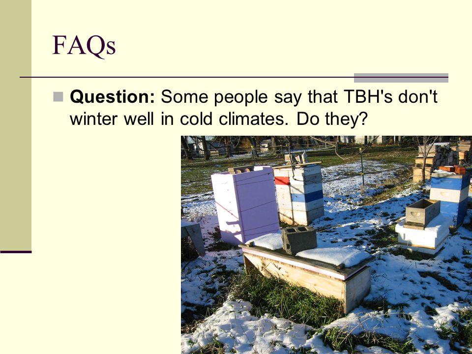 FAQs Question: Some people say that TBH s don t winter well in cold climates. Do they